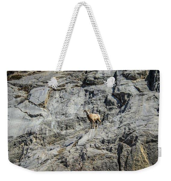 Big Horn Sheep Coming Down The Mountain  Weekender Tote Bag