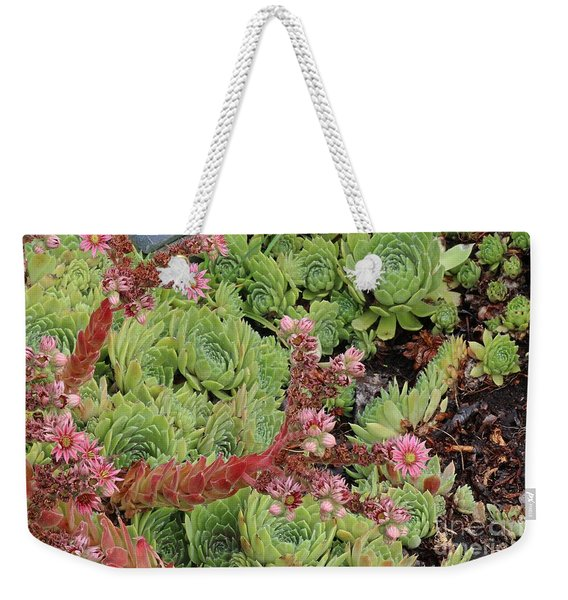 Hen And Chick In Bloom Weekender Tote Bag