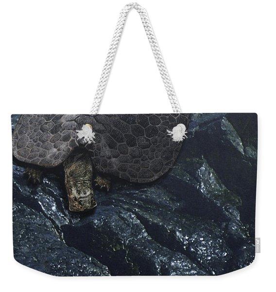 Henodus Turtle At The Waters Edge Weekender Tote Bag