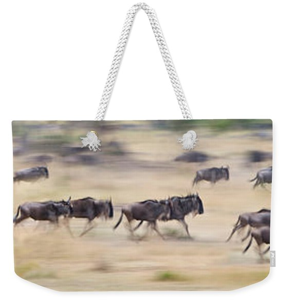 Herd Of Wildebeests Running In A Field Weekender Tote Bag