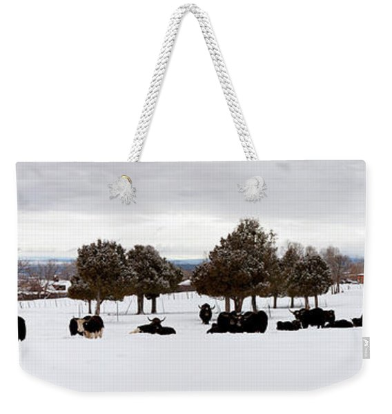Herd Of Yaks Bos Grunniens On Snow Weekender Tote Bag