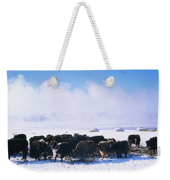 Herd Of Yaks On A Polar Landscape Weekender Tote Bag