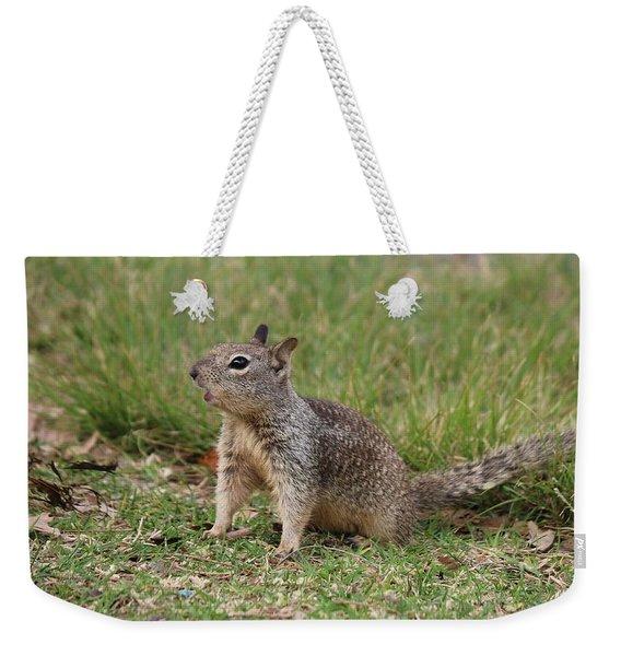 Hey There Weekender Tote Bag