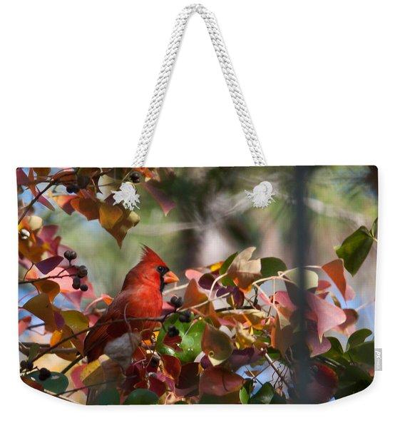 Hiding Away Weekender Tote Bag