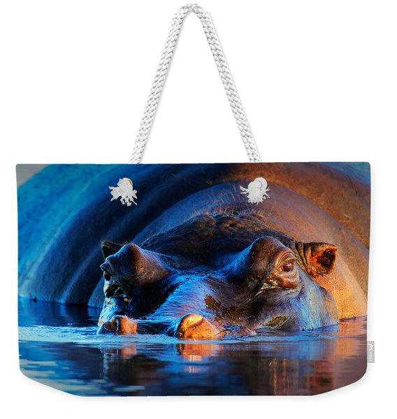 Hippopotamus  At Sunset Weekender Tote Bag