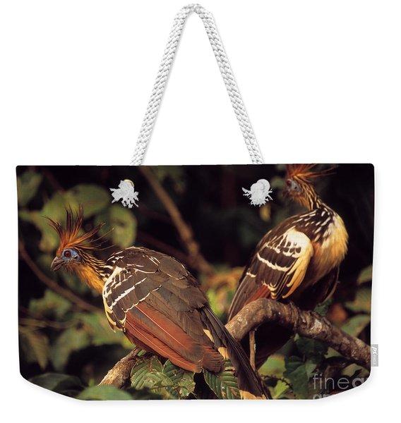 Hoatzins Weekender Tote Bag