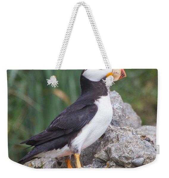 Horned Puffin Weekender Tote Bag