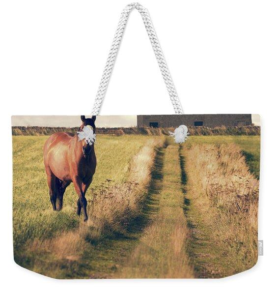 Horse In Field Weekender Tote Bag