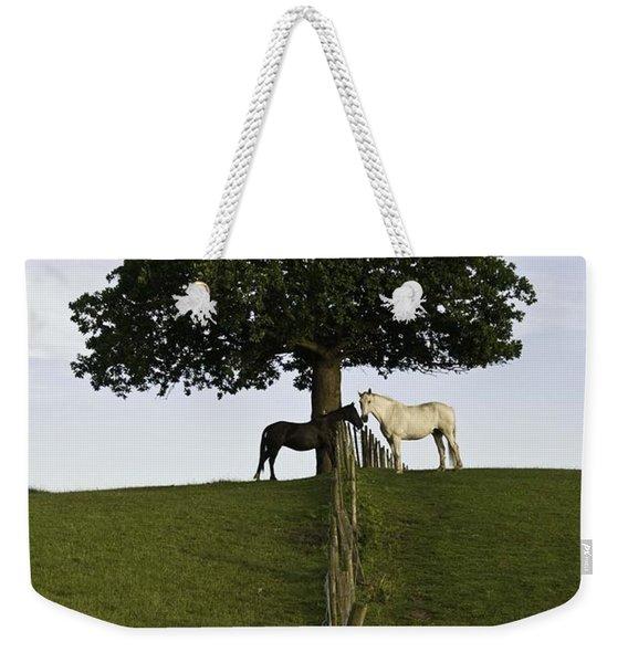Horse Whisperers   Weekender Tote Bag