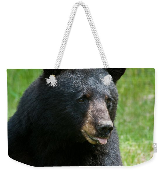 Hot Day In Bear Country Weekender Tote Bag