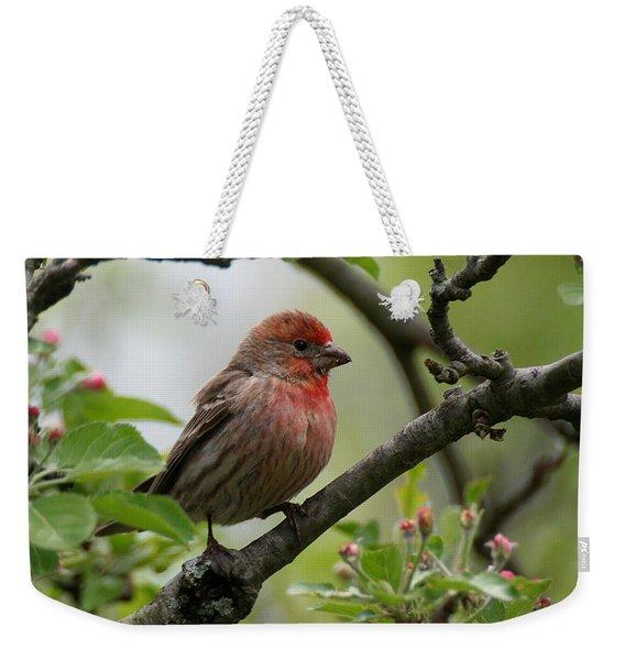 House Finch In Apple Tree Weekender Tote Bag