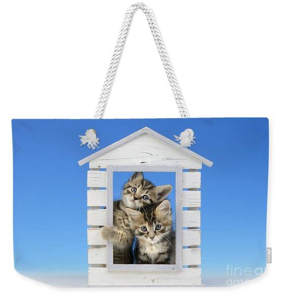 House Of Kittens Ck528 Weekender Tote Bag