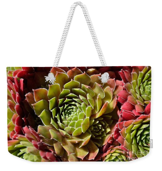 Weekender Tote Bag featuring the photograph Houseleek Group by Scott Lyons