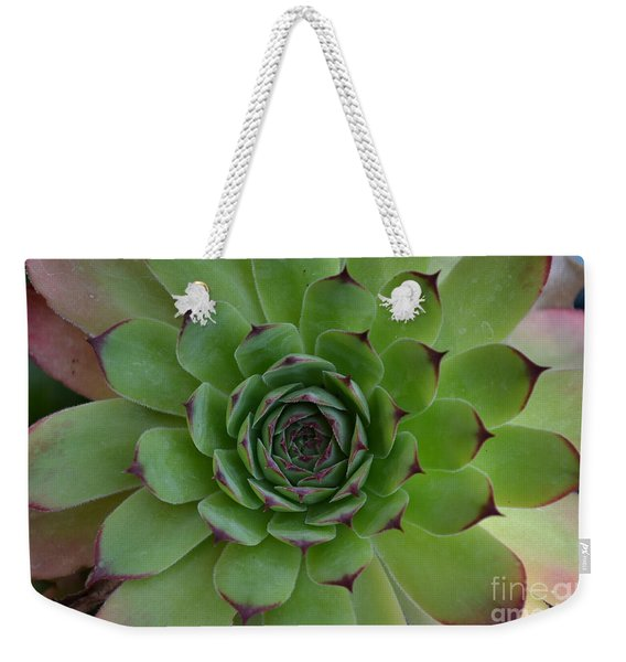 Weekender Tote Bag featuring the photograph Houseleek Sempervivum by Scott Lyons