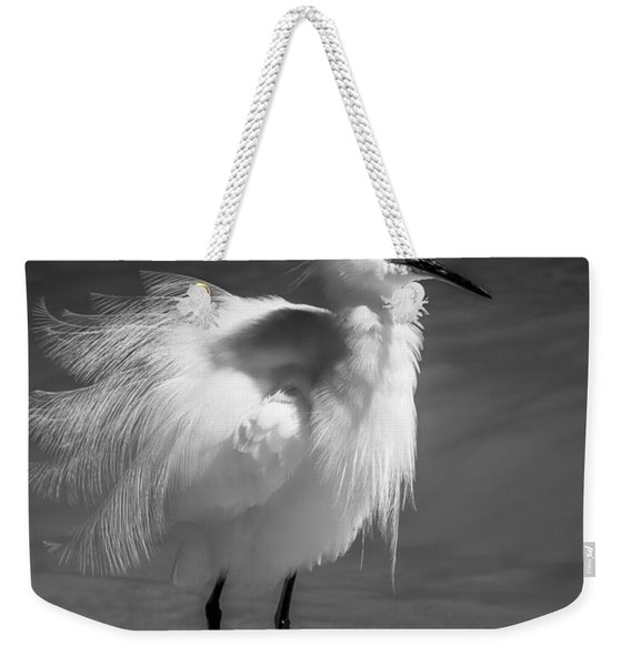 How Do I Look- Bw Weekender Tote Bag