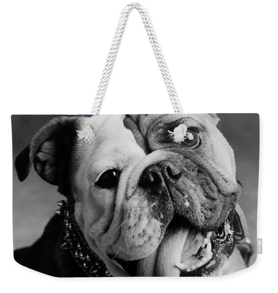 Weekender Tote Bag featuring the photograph Huh by Jill Reger