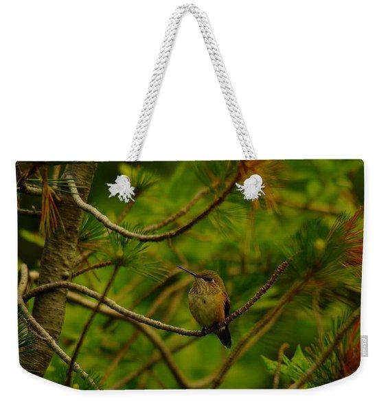Humming Birds Perched  Weekender Tote Bag