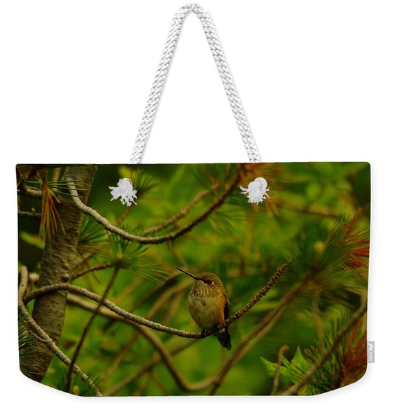 Humming Birds Perched  Weekender Tote Bag