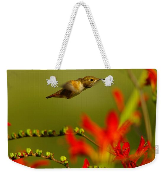 Hummingbird In A Rush Weekender Tote Bag