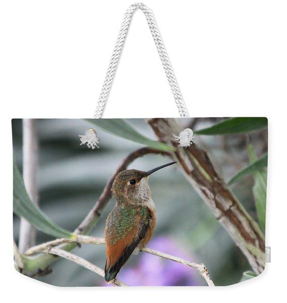 Hummingbird On A Branch Weekender Tote Bag