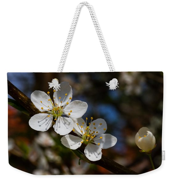 Hungry For Sun Weekender Tote Bag