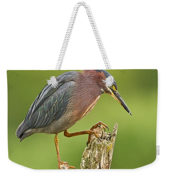 Hunting Green Heron Weekender Tote Bag