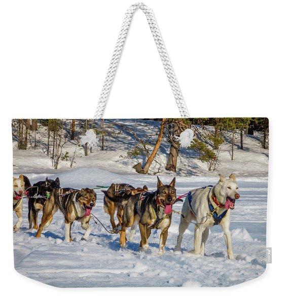 Husky Sled Dogs, Lapland, Sweden Weekender Tote Bag