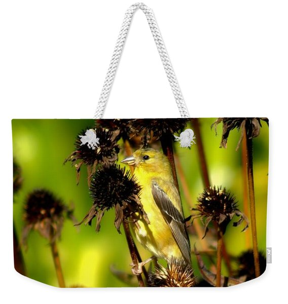 I Am A Flower Stalk Do You See Me Weekender Tote Bag