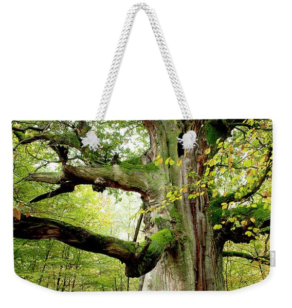 I Am Nearly 1000 Years Old Weekender Tote Bag