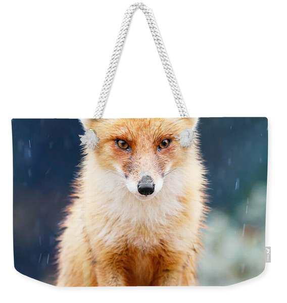 I Can't Stand The Rain  Fox In A Rain Shower Weekender Tote Bag