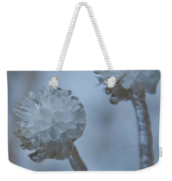 Ice-covered Winter Flowers With Blue Background Weekender Tote Bag