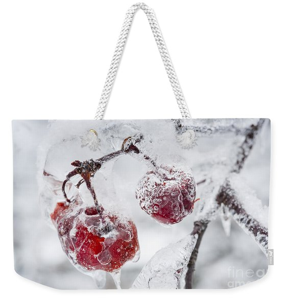 Icy Branch With Crab Apples Weekender Tote Bag