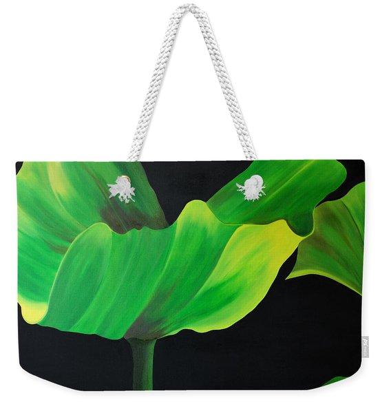 If Shades Could Speak Weekender Tote Bag