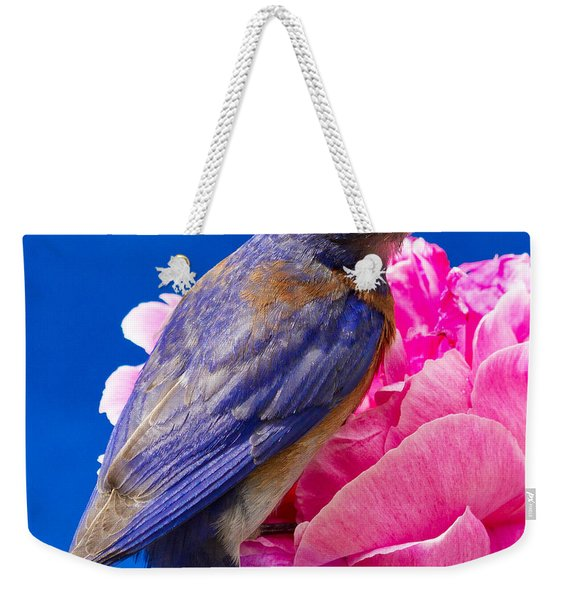I'm Ready For My Close Up Weekender Tote Bag
