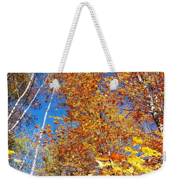 In The Forest At Fall Weekender Tote Bag
