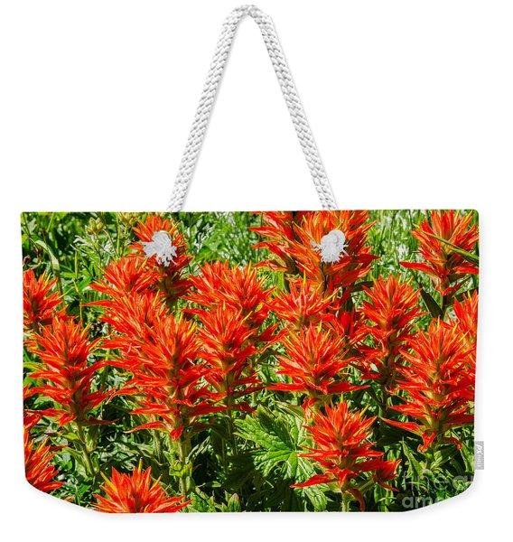 Indian Paintbrush Weekender Tote Bag