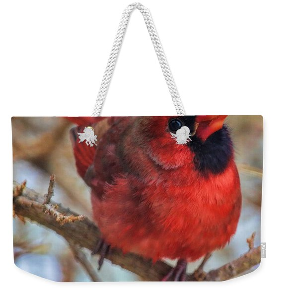 Inquisitive Cardinal Weekender Tote Bag