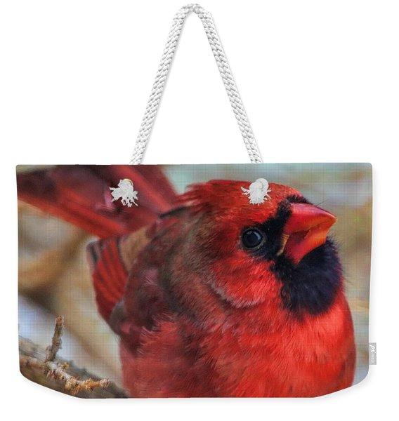 Inquisitive Cardinal Weekender Tote Bag