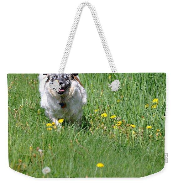It's Spring - It's Spring Weekender Tote Bag