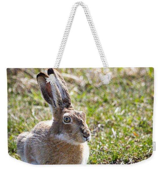 Jackrabbit Weekender Tote Bag