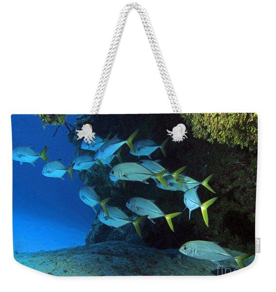 Jacks Weekender Tote Bag
