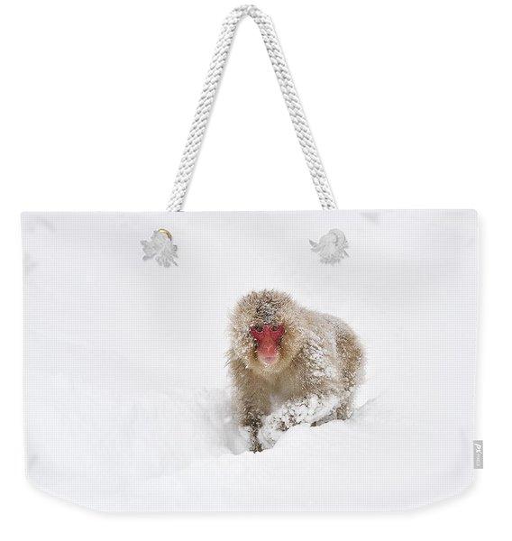 Japanese Macaque In Snow Jigokudani Weekender Tote Bag