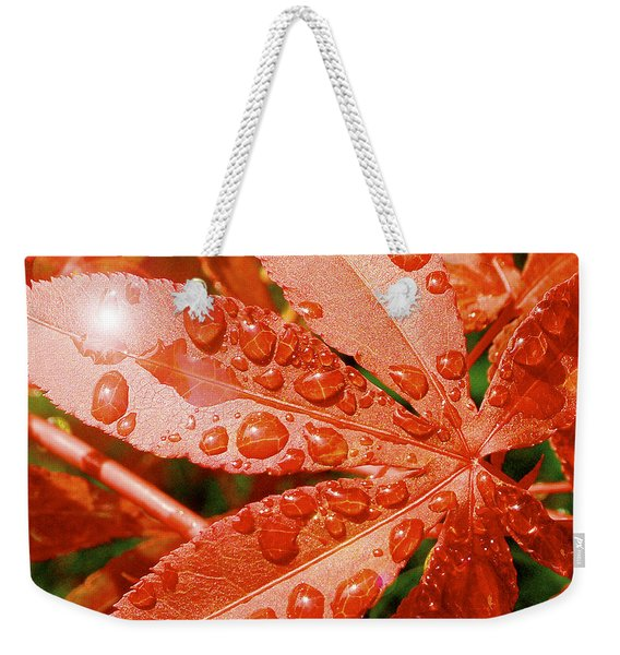 Japanese Maple Leaf With Rain Drops And Sunburst Weekender Tote Bag