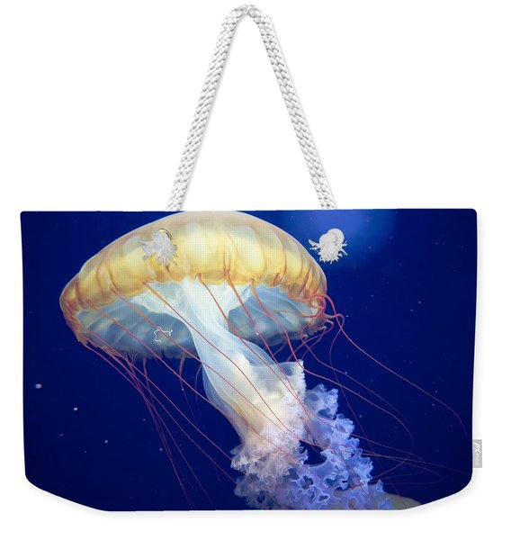 Weekender Tote Bag featuring the photograph Japanese Sea Nettle Chrysaora Pacifica by Mary Lee Dereske