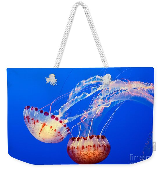 Jelly Dance - Large Jellyfish Atlantic Sea Nettle Chrysaora Quinquecirrha. Weekender Tote Bag