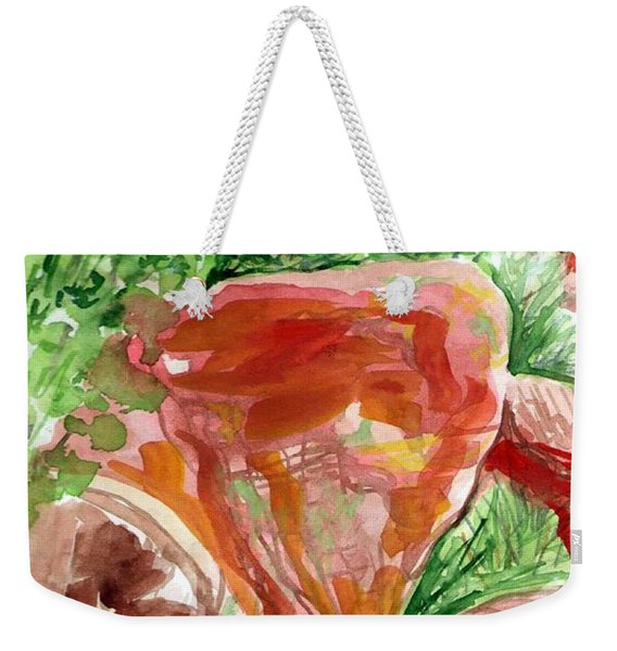Weekender Tote Bag featuring the painting Jemez Red Rocks by Ashley Kujan
