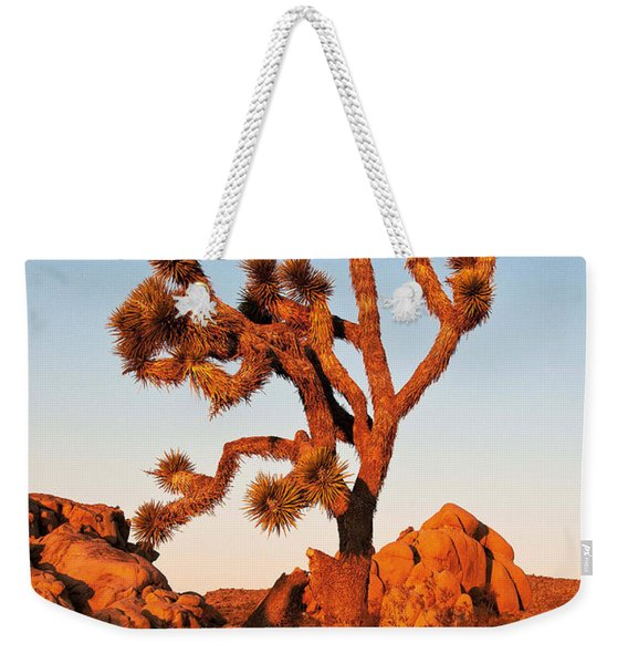 Weekender Tote Bag featuring the photograph Joshua Tree At Sunset by Mae Wertz