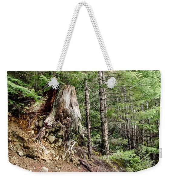 Just Hanging On Old Growth Forest Stump Weekender Tote Bag
