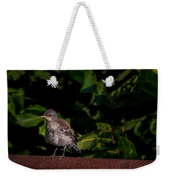 Just Out Of The Nest Weekender Tote Bag