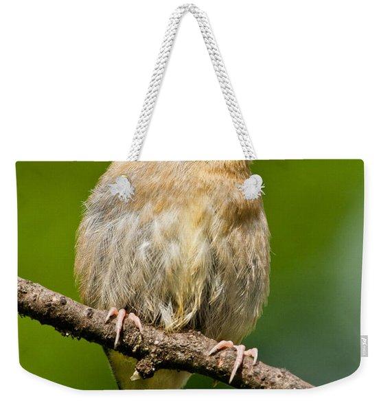 Juvenile American Goldfinch Weekender Tote Bag